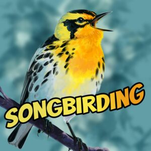 Songbirding