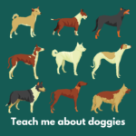 Teach Me About Doggies